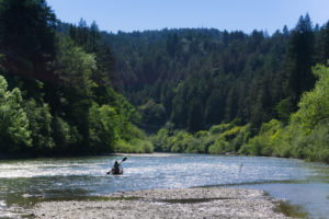 Lone person paddles a canoe down a river in a forested canyon along the Russian River in California